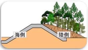 国土交通省が示した「緑の防潮堤」のイメージ