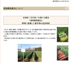 ※渋川市のウェブサイトから引用