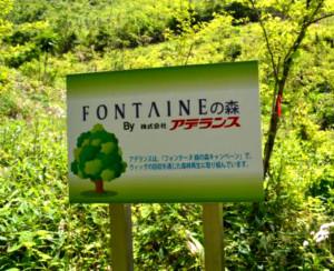 キャンペーンを通じて植林されたフォンテーヌ緑の森(一部)