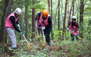 専用の熊手を使った柴かき作業(長野県伊那市・富県)