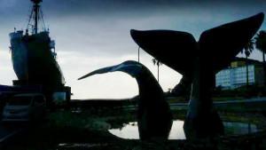 「憶測や感情で語られがちなクジラやイルカの問題について、映画を通して健全な対話が生まれることを望む」と佐々木監督は話す