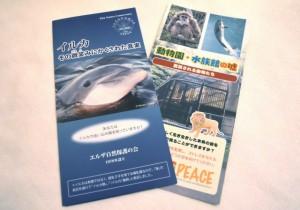 イルカ保護を訴えるパンフレット。主催グループ所属の「エルザ自然保護の会」、「PEACE」が制作した