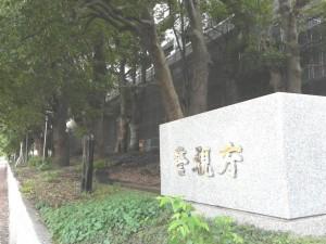 日比谷公園側から撮影した警視庁のクスノキ。35年後の2050年、東京はいかなる植生に覆われているのだろうか。私たちや私たちの身近な人たちは、どのような社会に生きているのだろうか。