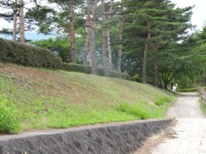 特に手を加えてないように見える土手も、近くで見ると地表をネットで覆い、土壌や植物の流出を防いでいる。(山梨県南アルプス市内)