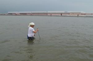 羽田沖で大型漁具「鋤簾」を使ってハマグリを捕る亀石さん