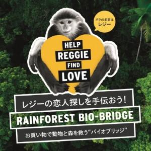 アカアシドゥクラングールにレジーという愛称を付け、キャンペーンを展開。日本では唯一よこはま動物園ズーラシア(横浜市)がドゥクラングールを飼育している
