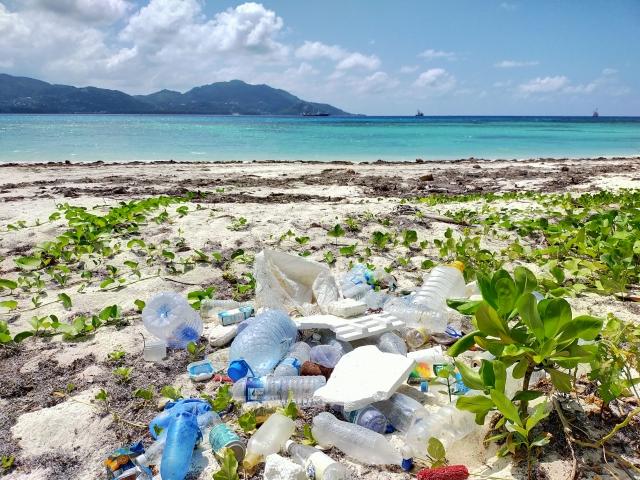 海洋プラスチックごみ_イメージ